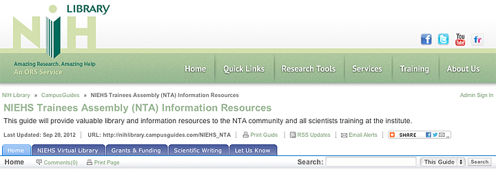 Screenshot of online library guide