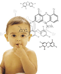 Illustration of baby's exposure to polybrominated diphenyl ethers (PBDEs)