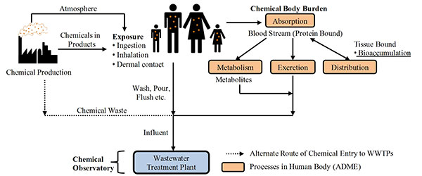Wastewater cycle figure