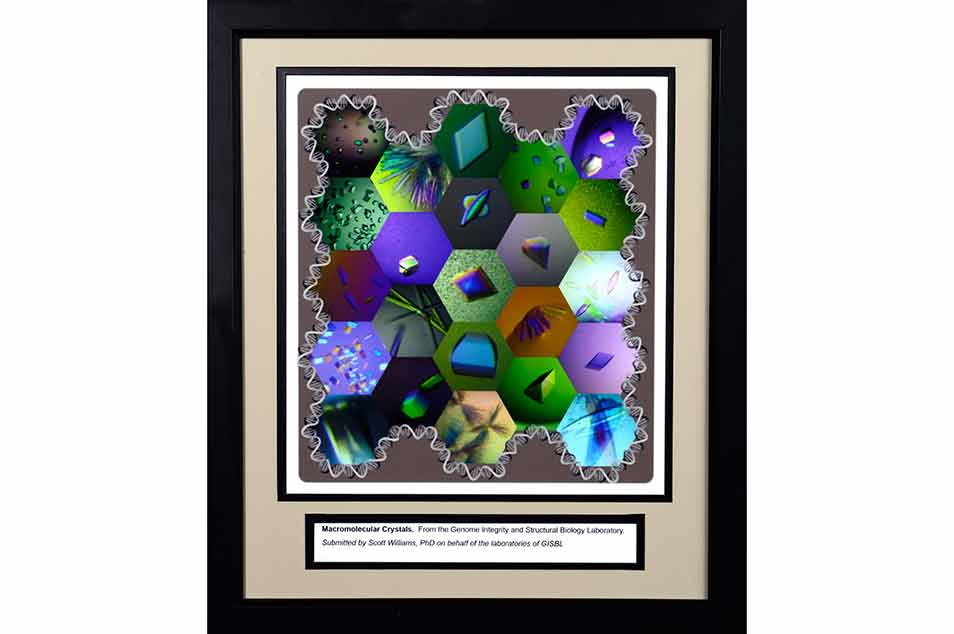 23 hexagonal images of macromolecular crystals.