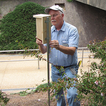 Bill Willis cleaning the bee box
