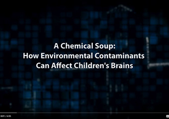 A Chemical Soup: How Environmental Contaminants Can Affect Children's Brains
