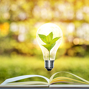 illustration of book with lightbulb hovering above containing a leaf