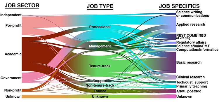 Job Sector, Type, and Specifics
