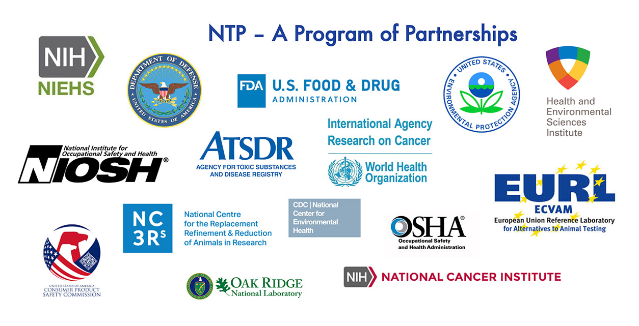 NTP's partnerships with logos