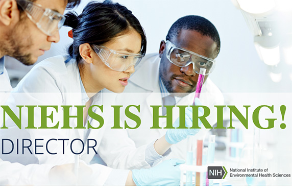 "A flyer with Scientists looking at test tubes and words overlaying the image, ""NIEHS IS HIRING DIRECTOR"""