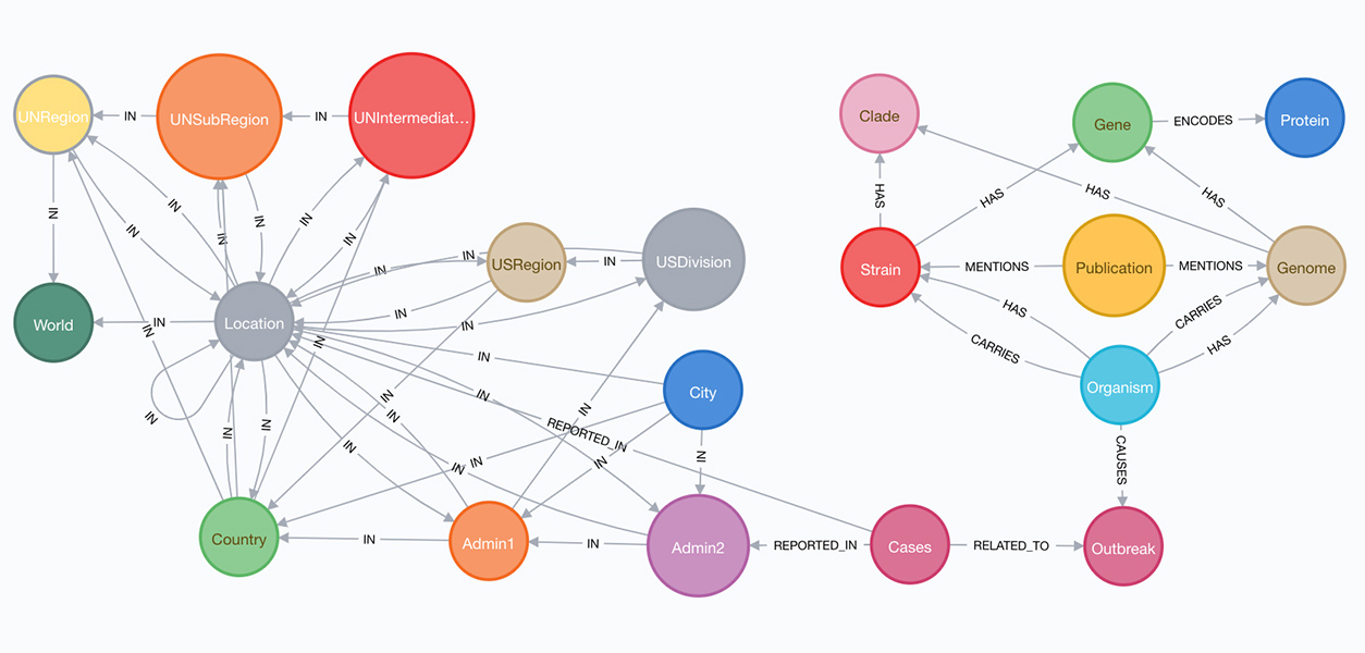 preliminary knowledge graph model showing the COVID-19 location hierarchy from world to city level