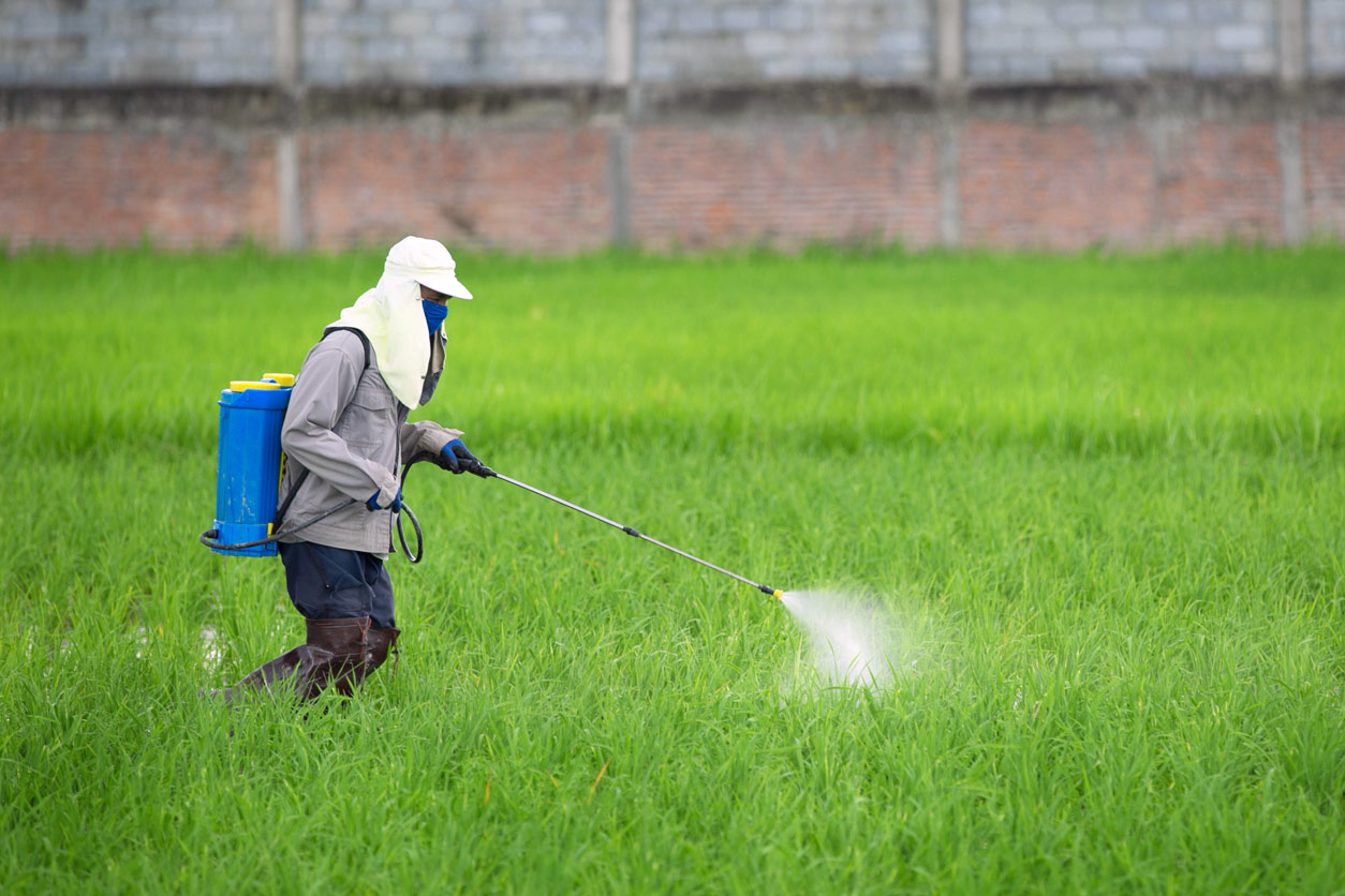 person spraying pesticide with insecticide sprayer wearing protection equipment