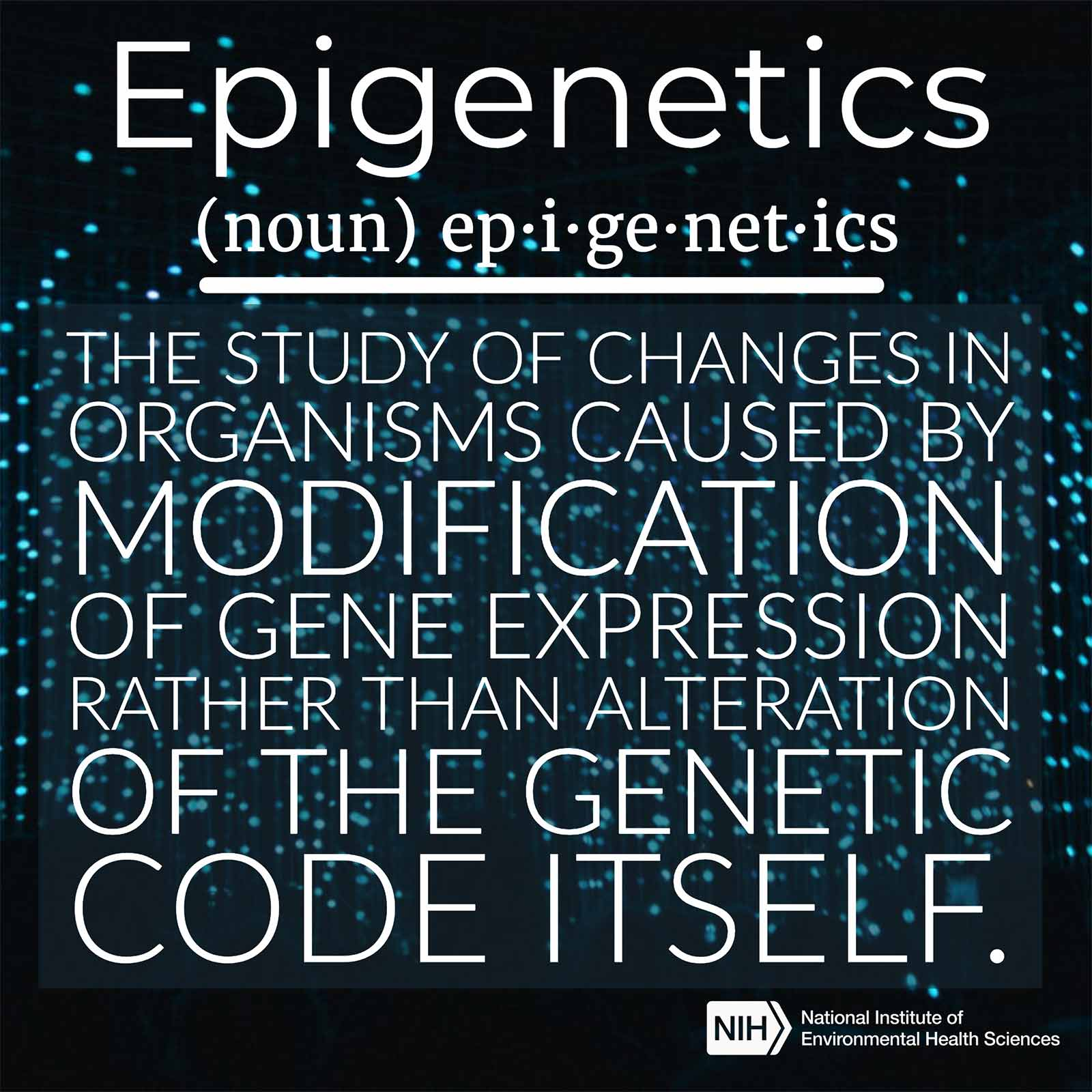 Epigenetics (noun) described as the study of changes in organisms caused by modification of gene expression rather than alteration of the genetic code itself.