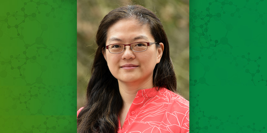 Amy Wang, Ph.D.